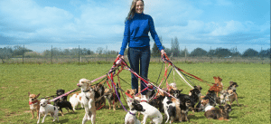 woman with many dogs